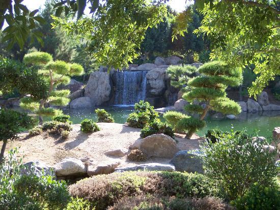 japanese garden phoenix