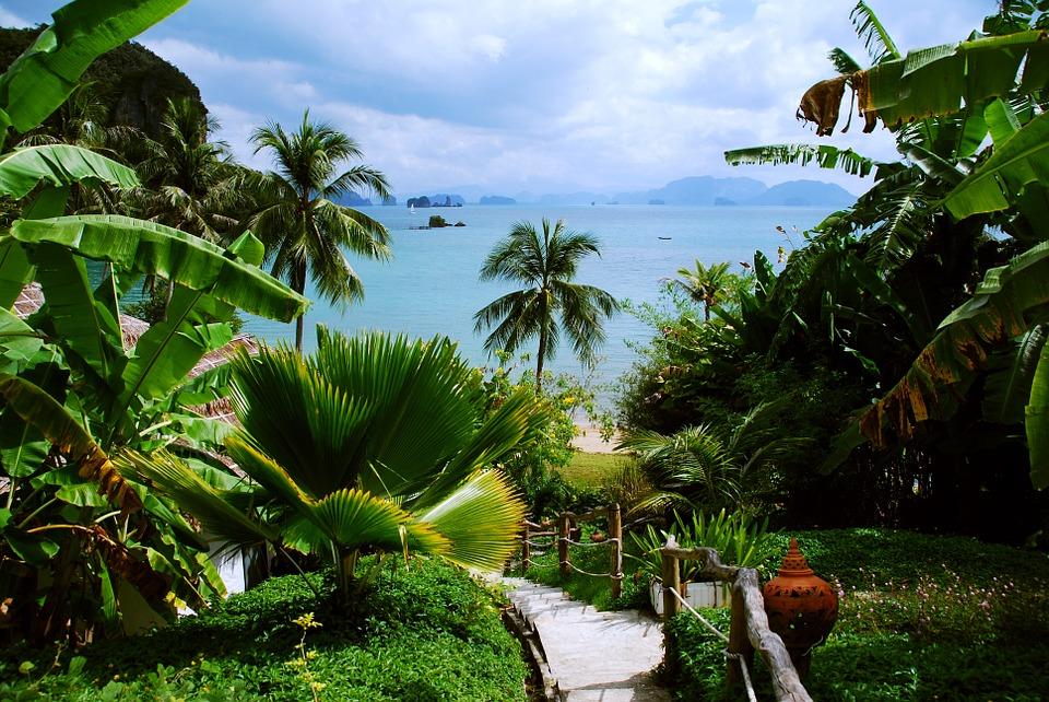paysage thailande